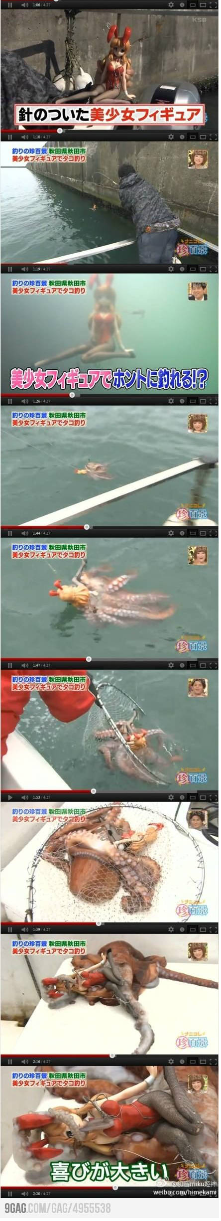 how to catch an octopus